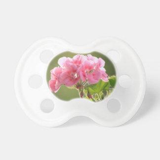 geranium pacifier
