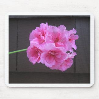 Geranium Pink Mouse Pad