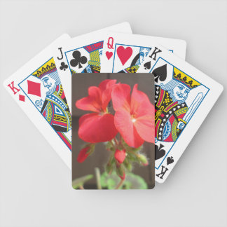 Geranium Red Bicycle Playing Cards