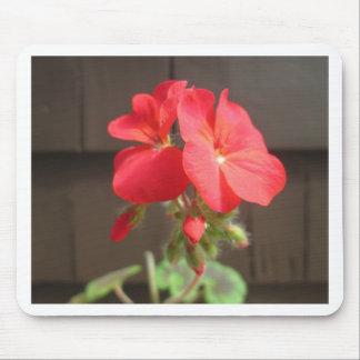 Geranium Red Mouse Pad