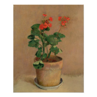 Geraniums in a Pot, c.1905 (oil on canvas) Poster