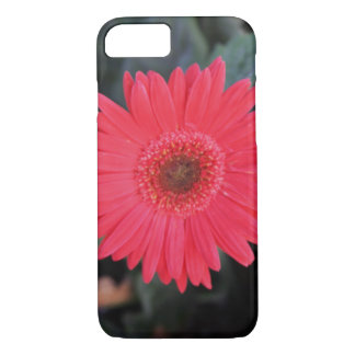 Gerber Daisy iPhone 7 Case