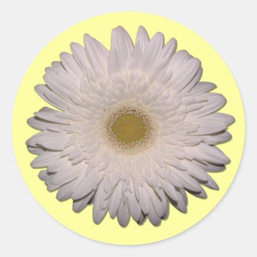 Gerber Daisy Round Sticker
