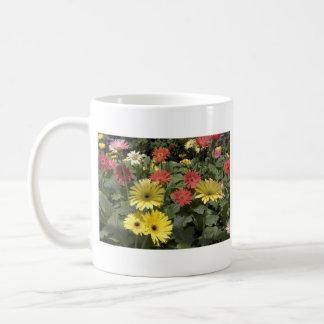 Gerbera Daisies Mug