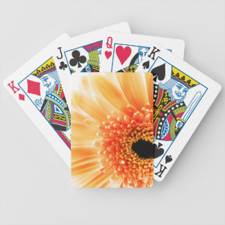 Gerbera Daisy Bicycle Playing Cards