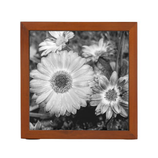 Gerbera Daisy Black & White Photograph Pencil/Pen Holder