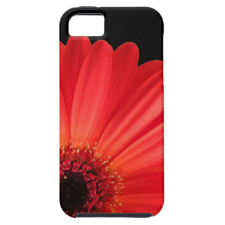 Gerbera Daisy Case For The iPhone 5