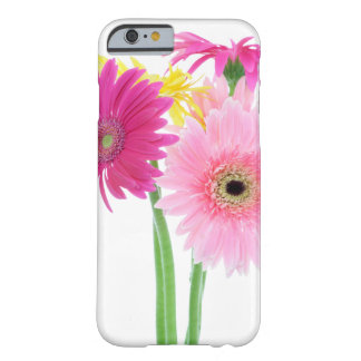 Gerbera Daisy Flowers Barely There iPhone 6 Case