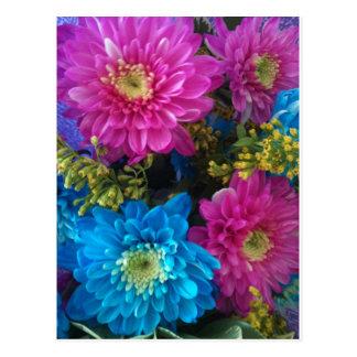 Gerbera Daisy Flowers Postcard