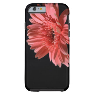 Gerbera daisy on black background 3 tough iPhone 6 case