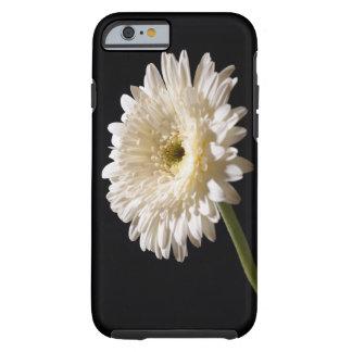 Gerbera daisy on black background tough iPhone 6 case