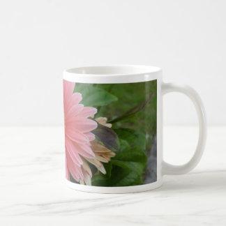 Gerbera Daisy Pink Classic White Coffee Mug