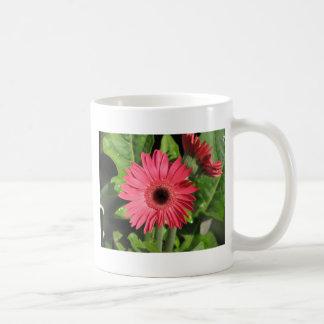 Gerbera Daisy Pink Mugs