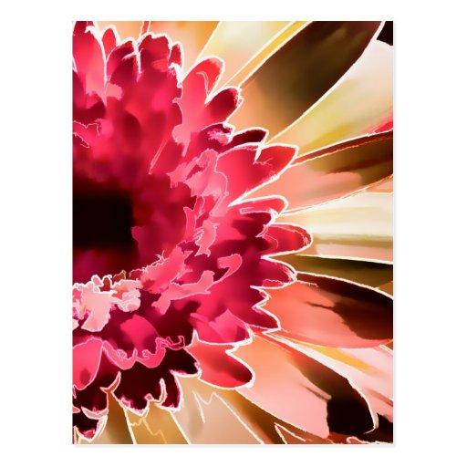 Gerbera Daisy Squared Post Card