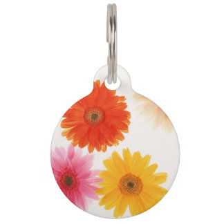 Gerbera Flowers Print Floating Flower Daisy Floral Pet Name Tag