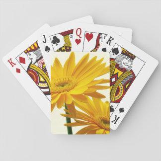 gerbera poker deck