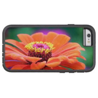 gerbera tough xtreme iPhone 6 case