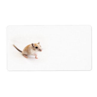 Gerbil Cute Baby Animal Pet Gerbils Template