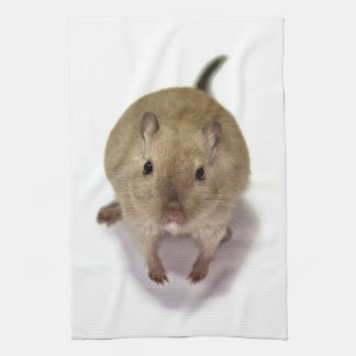 Gerbil Kitchen Towel