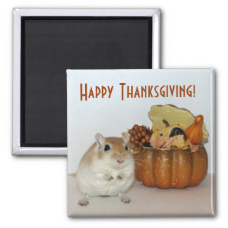 Gerbil Thanksgiving Magnet