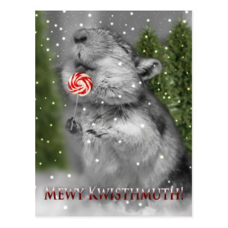 Gerbil's Christmas Dream Postcard