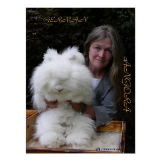 GERMAN ANGORA RABBIT ADD POSTER