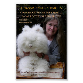 GERMAN ANGORA RABBIT MAG. ADD. POSTER