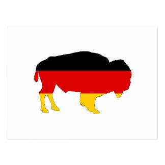 German Flag - Bison Postcard