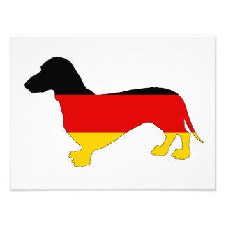 German Flag - Dachshund Art Photo