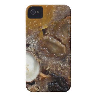 German fruit bread iPhone 4 case