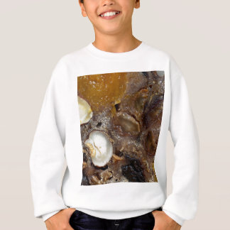 German fruit bread sweatshirt