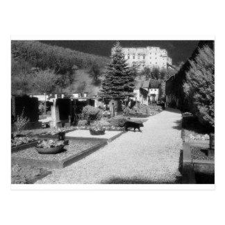 German Graveyard with black cat walking through. Postcard