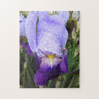German Iris With Some Raindrops Jigsaw Puzzle