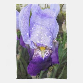 German Iris With Some Raindrops Kitchen Towel