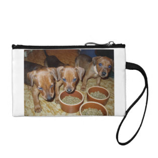 german Pinscher_puppies Coin Purse
