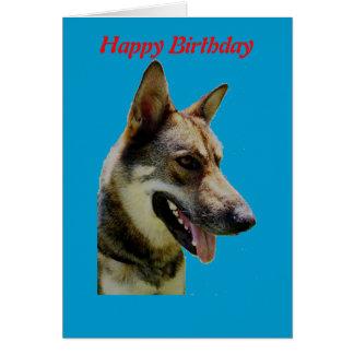 German Shepard Birthday Card