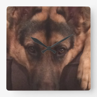 German Shepard clock