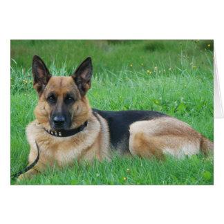 German Sheperd - Dog Greeting Card