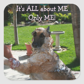 German Shepherd All About Me Stickers