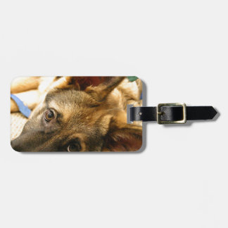 German Shepherd Bag Tag