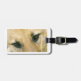german-shepherd-black and cream eyes luggage tag