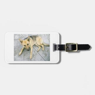 german-shepherd-black and cream laying luggage tag