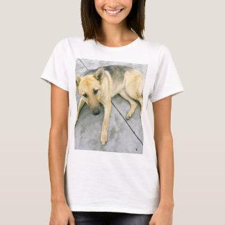 german-shepherd-black and cream laying T-Shirt