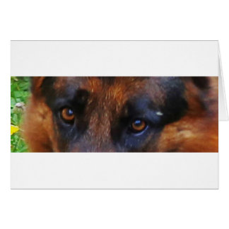 german-shepherd-black and red eyes card