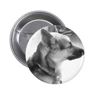 German Shepherd/black & White Photo Pin