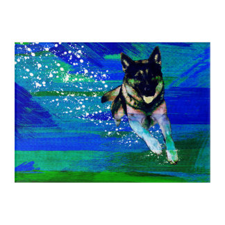 GERMAN SHEPHERD DOG ACRYLIC PRINT