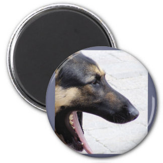 German Shepherd Dog Magnet