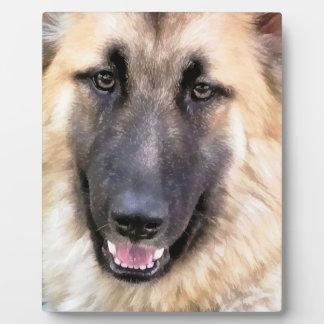 GERMAN SHEPHERD DOG PLAQUE