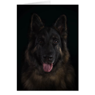 German shepherd dog portrait card