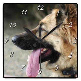 German Shepherd dog square clock